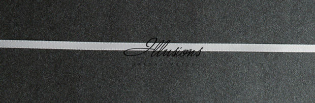 Illusions Bridal Ribbon Edge Wedding Veil 7-361-1R: Rhinestone Accent, White Fingertip Length