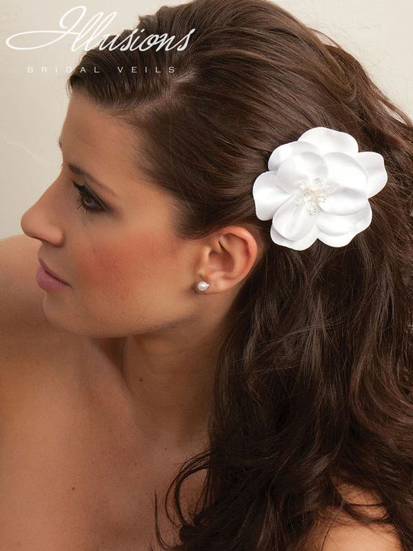 Illusions Bridal Hair Accessories 8252