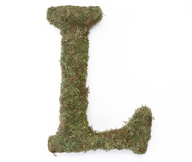 Lillian Rose Large Moss Monogram Letter - 15 inch, L