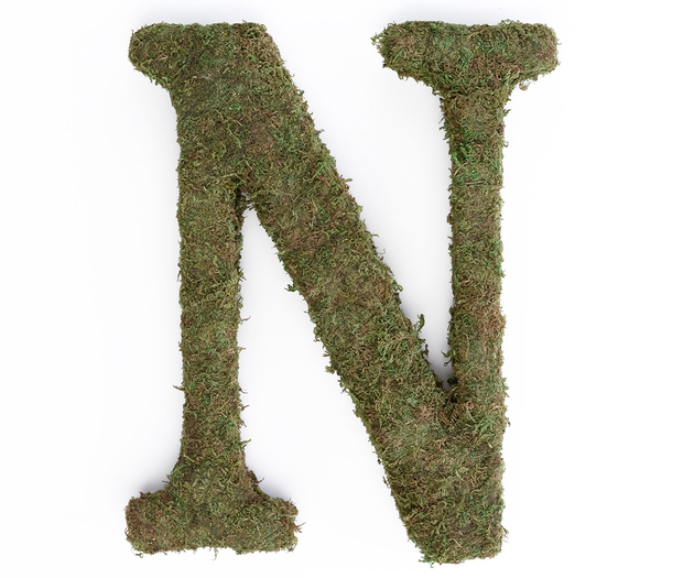 Lillian Rose Large Moss Monogram Letter - 15 inch, N