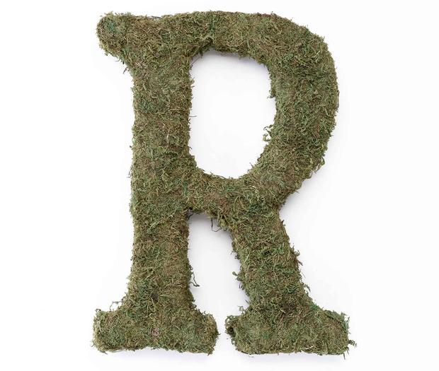 Lillian Rose Large Moss Monogram Letter - 15 inch, R