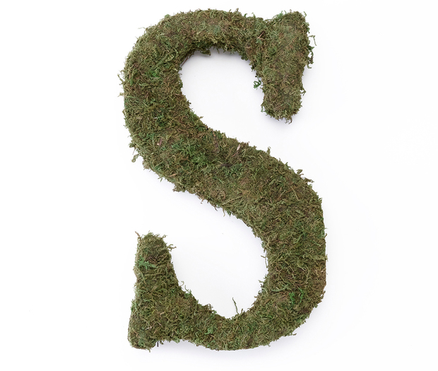 Lillian Rose Large Moss Monogram Letter - 15 inch, S