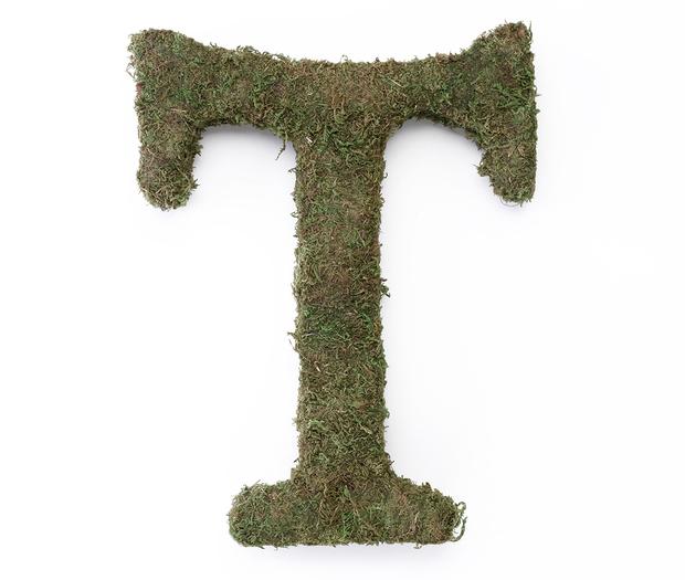 Lillian Rose Large Moss Monogram Letter - 15 inch, T