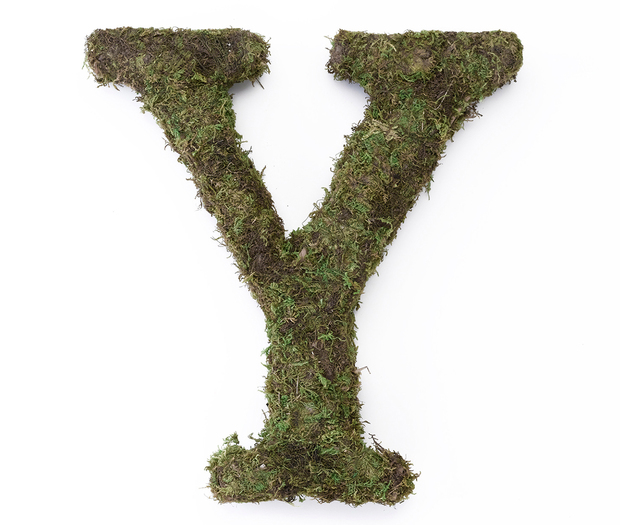 Lillian Rose Large Moss Monogram Letter - 15 inch, Y
