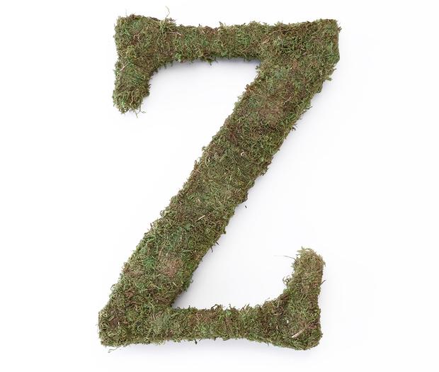 Lillian Rose Large Moss Monogram Letter - 15 inch, Z