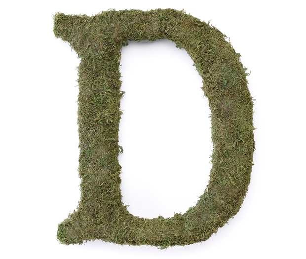Lillian Rose Large Moss Monogram Letter - 15 inch, D
