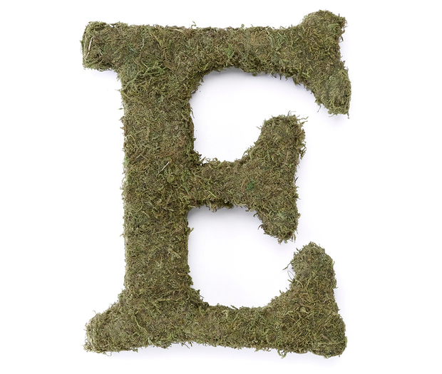 Lillian Rose Large Moss Monogram Letter - 15 inch, E