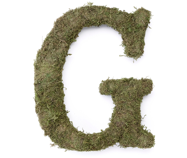 Lillian Rose Large Moss Monogram Letter - 15 inch, G