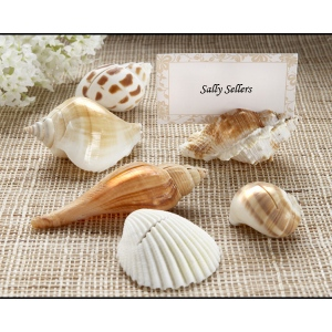 Shells by the Sea, Authentic Shell Place Card Holders with Matching Place Cards: Set of 6