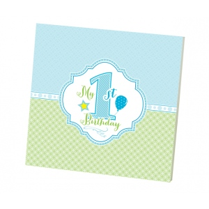 Lillian Rose 1st Birthday Memory Book: Blue