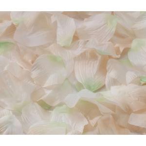 Lillian Rose Rose Petals - Ivory