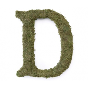 Lillian Rose Large 15 inch Moss Monogram Letter - D