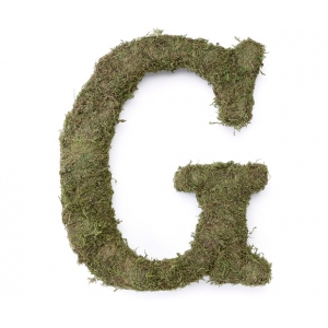Lillian Rose Large 15 inch Moss Monogram Letter - G
