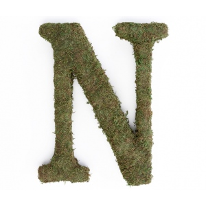 Lillian Rose Large 15 inch Moss Monogram Letter - N