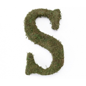 Lillian Rose Large 15 inch Moss Monogram Letter - S