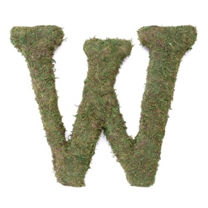 Lillian Rose Large 15 inch Moss Monogram Letter - W