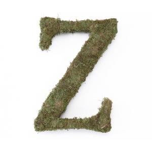Lillian Rose Large 15 inch Moss Monogram Letter - Z