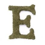 Lillian Rose Large 15 inch Moss Monogram Letter - E