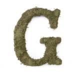 Lillian Rose Large 15 inch Moss Monogram Letter - G