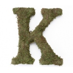 Lillian Rose Large 15 inch Moss Monogram Letter - K