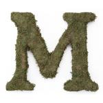Lillian Rose Large 15 inch Moss Monogram Letter - M