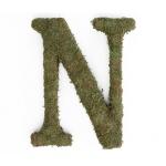 Lillian Rose Large 15 inch Moss Monogram Letter - N