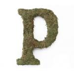 Lillian Rose Large 15 inch Moss Monogram Letter - P