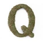 Lillian Rose Large 15 inch Moss Monogram Letter - Q
