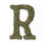 Lillian Rose Large 15 inch Moss Monogram Letter - R