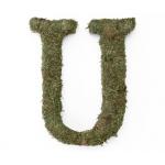 Lillian Rose Large 15 inch Moss Monogram Letter - U