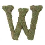 Lillian Rose Large 15 inch Moss Monogram Letter - W