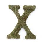 Lillian Rose Large 15 inch Moss Monogram Letter - X