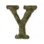 Lillian Rose Large 15 inch Moss Monogram Letter - Y